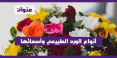 أنواع الورد الطبيعي وأسمائها