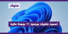 تحميل خلفيات ويندوز ١١ بجودة عالية Windows 11 Wallpaper