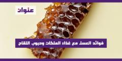 فوائد العسل مع غذاء الملكات وحبوب اللقاح