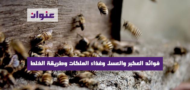 فوائد العكبر والعسل وغذاء الملكات وطريقة الخلط