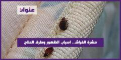 حشرة الفراش.. اسباب الظهور وطرق العلاج