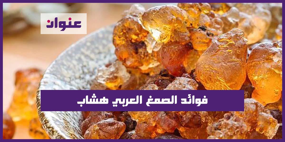 فوائد الصمغ العربي هشاب