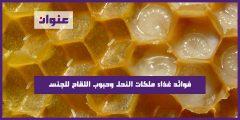 فوائد غذاء ملكات النحل وحبوب اللقاح للجنس