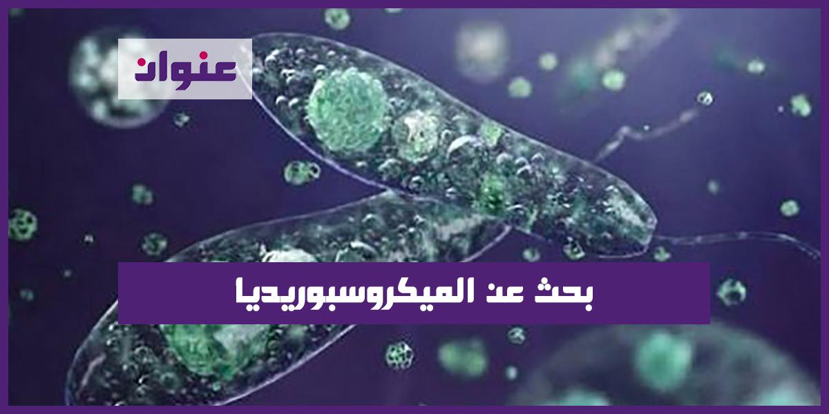 بحث عن الميكروسبوريديا