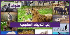 رتب الثدييات المشيمية