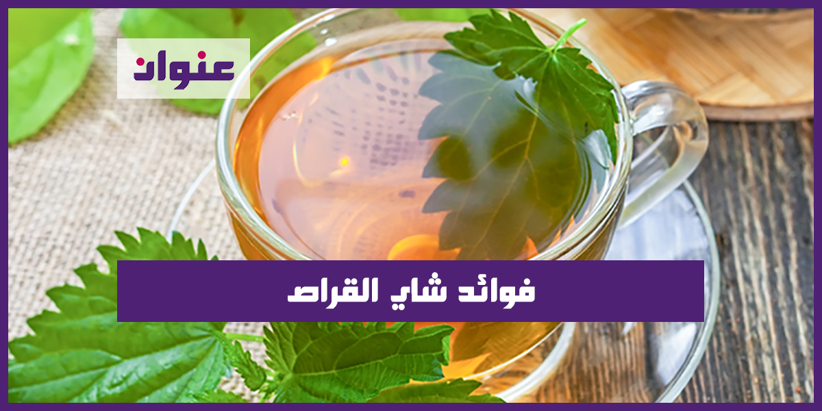 فوائد شاي القراص